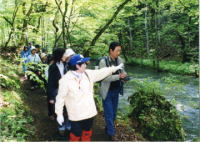 Sightseeing Volunteer Association of Towada - Lake Oirase Stream